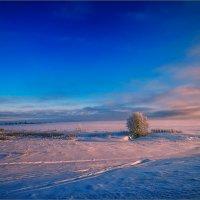 Картинка деревенская, вечерняя... :: Александр Никитинский