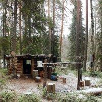 Первый снег :: Nikolay Zinoviev