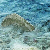 Добра Вода :: Любовь Белянкина