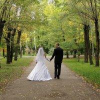 В парке :: Anatoliy Kosolapov