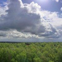 Небо :: Анатолий Гречкин