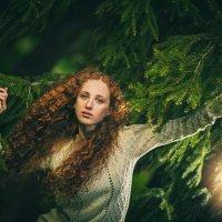 девушка в лесу :: Mila Nice