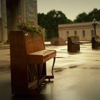 Gorky Park :: Lisa Shu