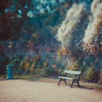 Wonderland :: Андрiй Боровський