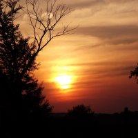 Летний закат :: Наталья Батылина