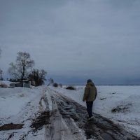 Дорогу осилит идущий :: Наталья Rosenwasser