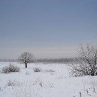 Зима.. :: Юлия Сергеевна