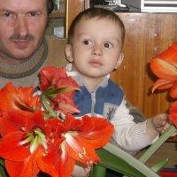 счастливое детство :: николай баулин