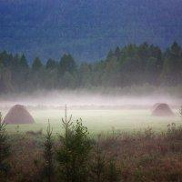 Туман на закате дня. :: Наталья Юрова
