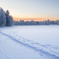Зима на Совином заливе :: Наталия Крыжановская