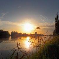 Дунай :: Алексей Салло