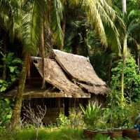 Rang Yai Island (Thailand) :: Александр Репко