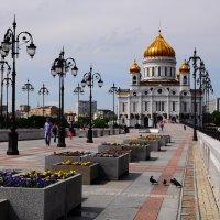 Москва. Храм Христа Спасителя.25.05.2013г. :: Виталий Виницкий