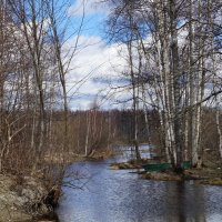 Весна :: Лёля Анурина