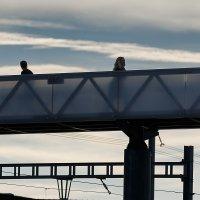 мост :: Дмитрий Карышев