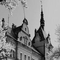 Замок Шенборна :: Натали Деметер