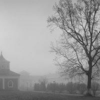 Туманное утро после пасхальной седьмицы :: Alexander Roschin