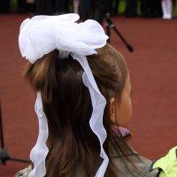 бант, девочка :: Тахир Мурзаев