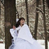 Свадьба, зима, парк. :: Ринат Махмутов