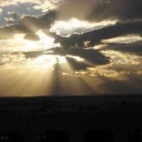 Небо Египта :: Юлия Тарасенко