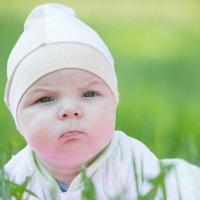 В траве сидел кузнечик :) :: Vinsent ...