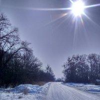 Морозно и солнечно. :: Татьяна ❧