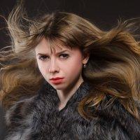 в мехах 2 :: Ольга Суханова