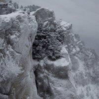 Заметает зима, заметает...... :: Юрий Цыплятников