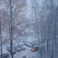Утро,зима и снег. :: Владимир Гилясев