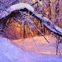 Изменчивый месяц февраль ... :: Евгений Юрков