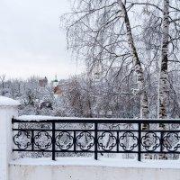 Ограда :: Андрей Зайцев