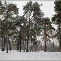 Снежит! :: Роланд Дубровский