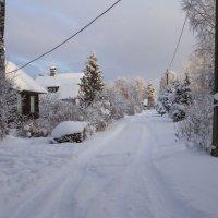 Зимой на дачах :: leo yagonen