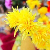 Искусственный цветок :: Анастасия Белякова