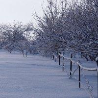Экскурсия в Гадюкино зимой (14) :: Александр Резуненко