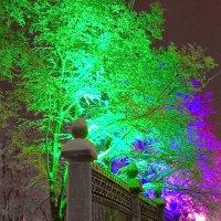 Зимняя радуга :: Андрей Зайцев