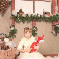 зимняя сказка :: Олеся Богатская