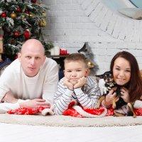 Вся семья в сборе! :: Олеся Богатская