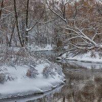 Зимний пейзаж. Фото 7. :: Вячеслав Касаткин