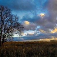 Одиночество :: Мария Богуславская