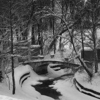 Черно-белая пастораль зимы.... :: Tatiana Markova