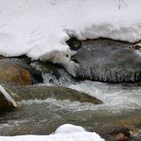 Зима может похвастаться не только своими холодами, но и своей сказочной красотой. :: Anna Gornostayeva