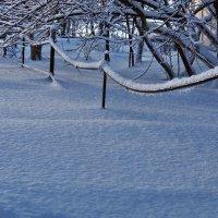 Экскурсия в Гадюкино зимой (16) :: Александр Резуненко
