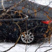 Февральский дождь ...  февральский снег...  всё сразу.. :: Валерия  Полещикова
