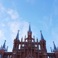 Римско-католический кафедральный собор :: Лариса Корженевская