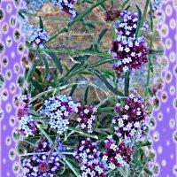 В сиреневом цвете :: Nina Yudicheva