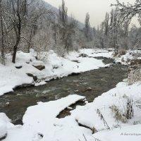 Волшебной сказкой восхищаясь, стою... зимы, незваный гость. :: Anna Gornostayeva