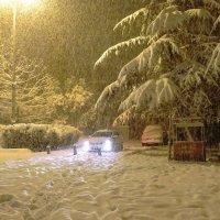 Сочи,снег,ночь !!! :: СветЛана D