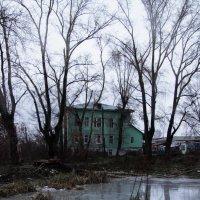 Дом на берегу пруда :: Диана Коновалова