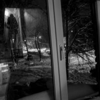 На прогулку :: Ольга Мансурова